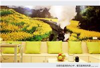 设计师家园-45�O小户型油菜花