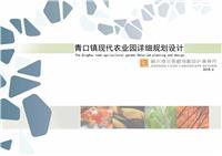 设计师家园-连云港青口镇综合体规划
