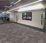 威海市山花地毯集团有限公司-英赛特FP6052A-3079B
